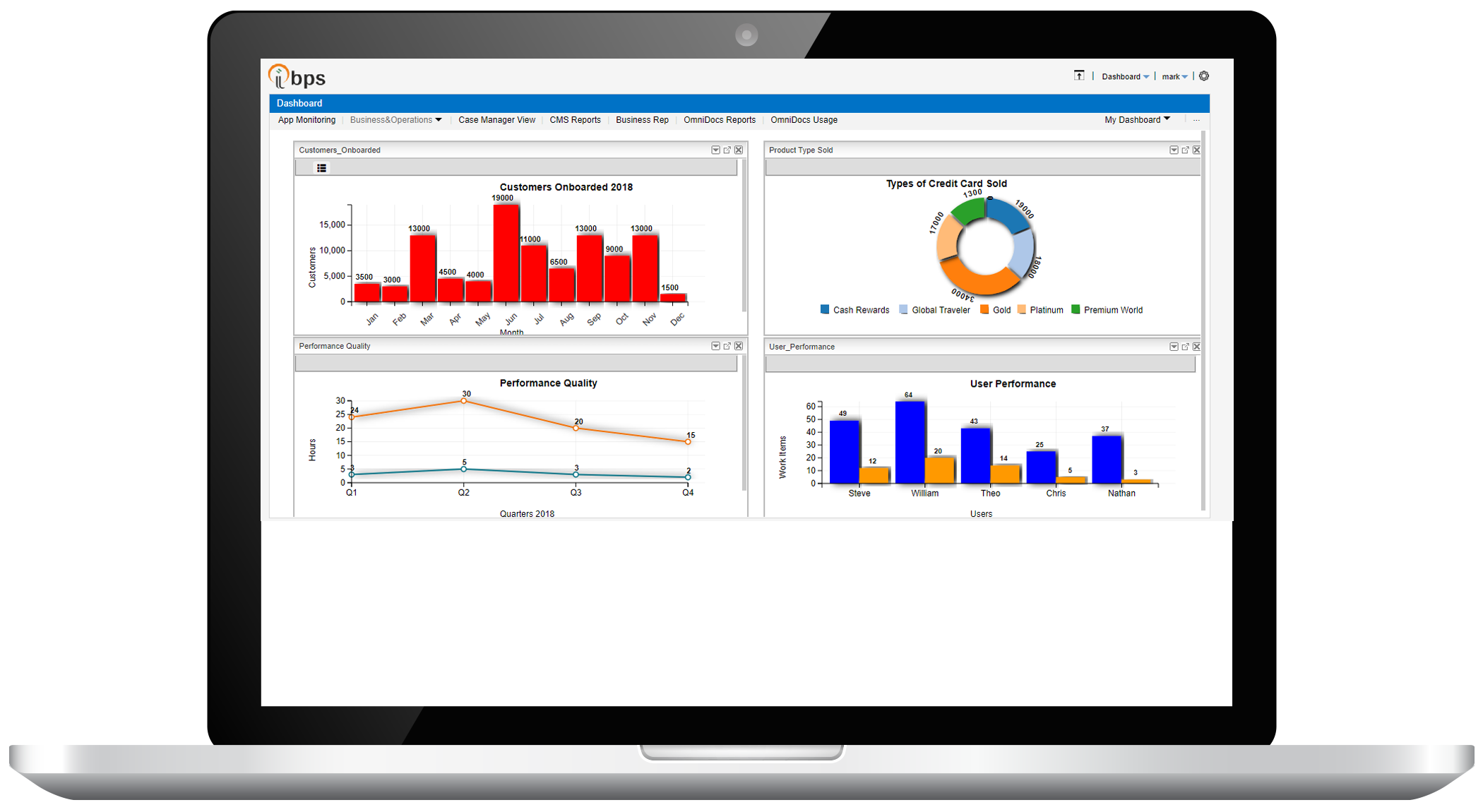 Reporting and Analytics - Business Process Automation and Management (BPM)